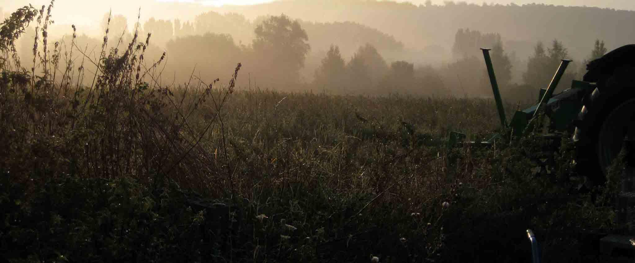 renard-maraicher-biologique-yvelines-78-tracteur-champ2