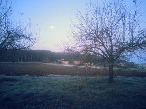 paysage hivernal chez la SARL Renard, maraîcher bio, Yvelines