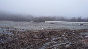 matin givré dans les champs de la SARL Renard, maraîcher bio, 78