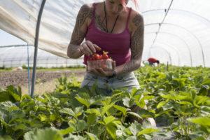 Laure aux fraises