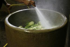 Carlos lavant les fenouils chez SARL Renard maraîcher bio Yvelines 78