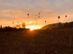 coucher de soleil chez SARL Renard, producteur de légumes bio, 78