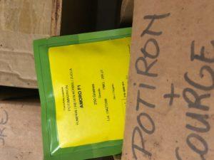 graine de potiron chez SARL Renard, producteur de légumes bio, 78